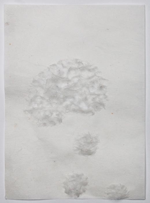 20x14 cm / 2011