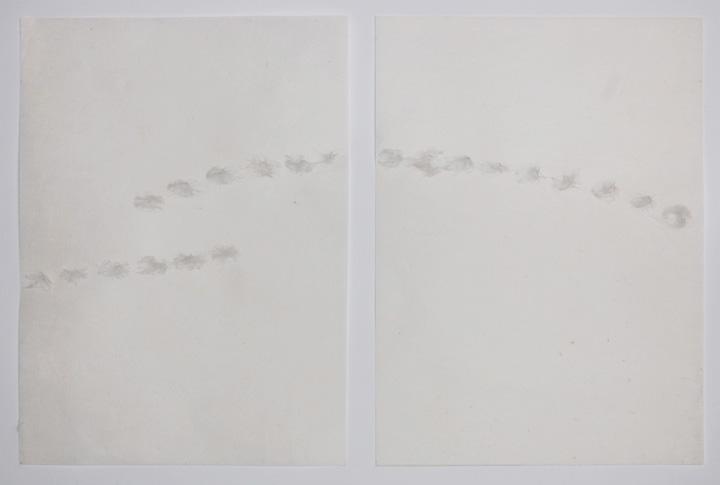 40x22 cm/ 2011