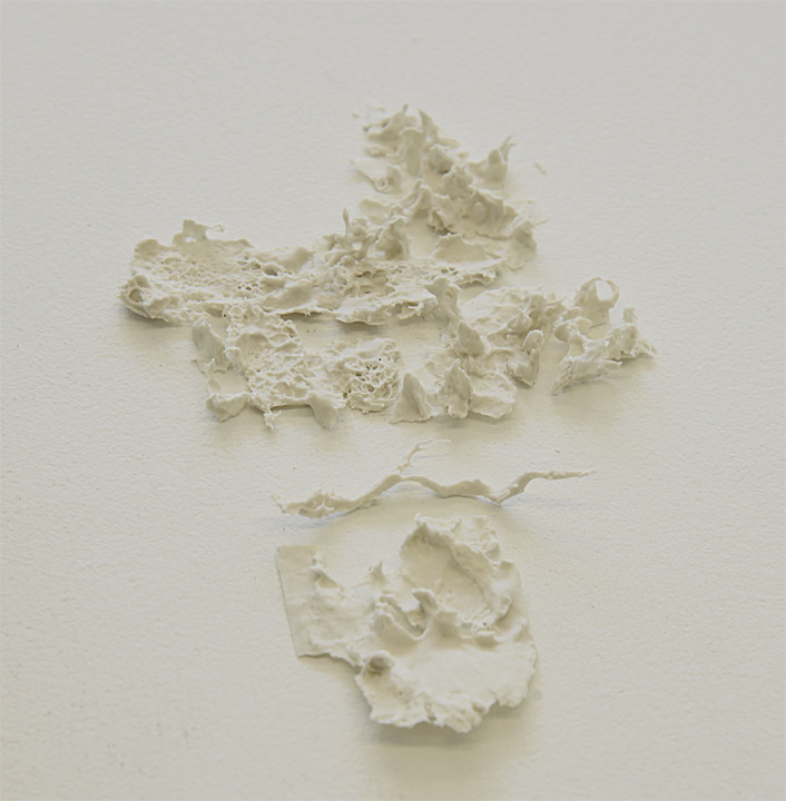 Porcelain, 17 x 12 x 1,5 cm , 2013.